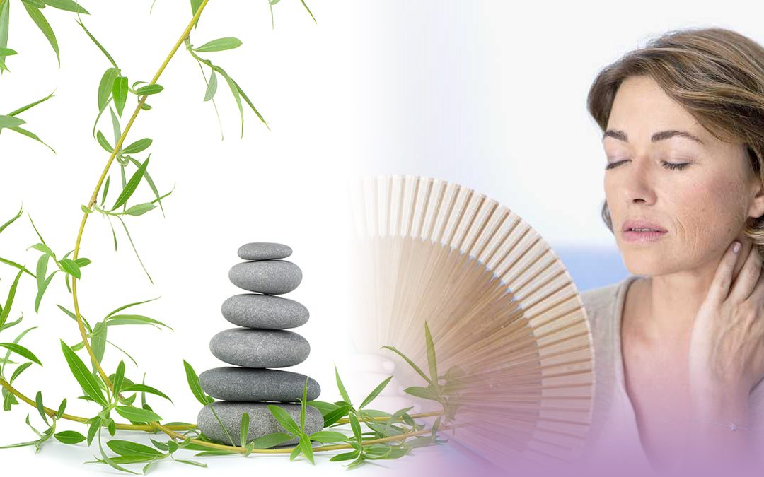 Reflexology and the Menopause for Practitioners